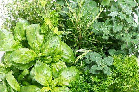 SUNNE SMAKSBOMBER: Bruk krydder og urter i stedet for salt. Ikke bare smaker krydderplanter godt, men de inneholder også antioksidanter som er med på å styrke immunforsvaret.