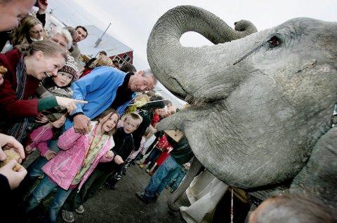 ALDRI MER: Heretter leier ikke Tromsø kommune ut plass til sirkus som kommer til byen med eksotiske dyr.