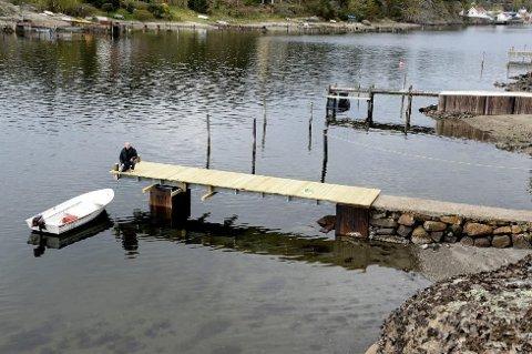 BRYGGEBRÅK: Per Gaasø mener kommunens gebyrpraksis hindrer folk i å ta vare på eiendommene sine.