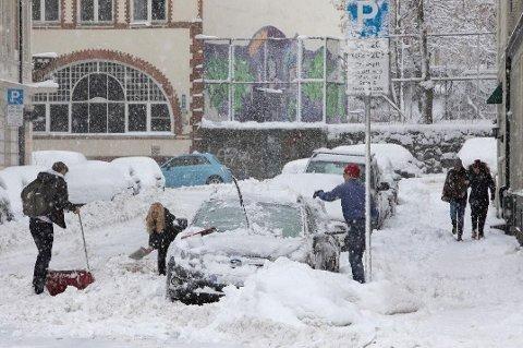 NESTEN REKORD: Bare to tidligere år har det vært mer snø på Blindern 12. mars enn det var i år.