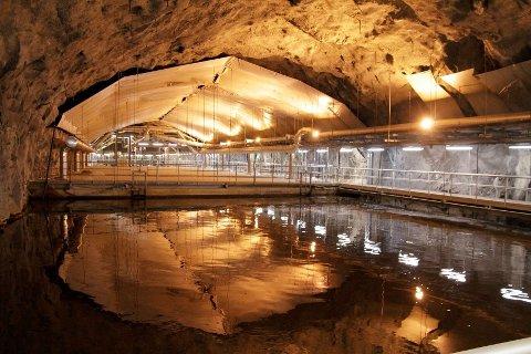 BEKKELAGET RENSEANLEGG: Renseanlegget ved Mosseveien tar imot og behandler avløpsvann fra Oslo sør og øst.
