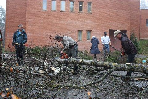 Martin Reichenbach gikk lørdag på med full kraft og motorsag på gamle trær ved Holmlia kirke. Mange hjelpende hender ryddet opp.