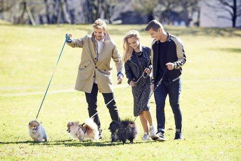 POMERANIANS: Her viser Stian, Sophie Elise og Atle hvordan man går tur med de små hundene.