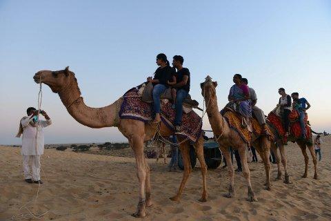 KAMEL: En mann ble drept av sin kamel i området Rajasthan i India. Rajasthan er et ørkenområde som blir besøkt av mange turister gjennom året, og kamelridning er blant de populære gjøremålene.