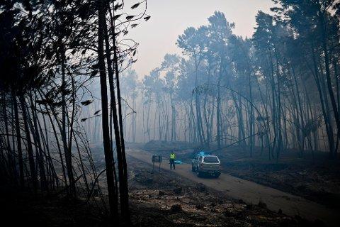 DØDE PÅ FLUKT: Mange av ofrene for skogbrannen i Portugal er funnet i bilene sine og har vært på flukt bort fra flammene da de døde. Dette bildet er tatt i Pedrogao søndag.