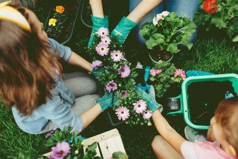 Til syvende og sist dreier det seg ikke om planting av planter eller å plukke opp kvikklunsj-papir. Men viljen å gi noe tilbake til fellesskapet