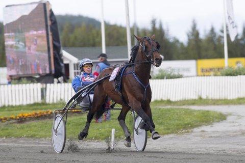 John Östman er aktuell i dagens V65-lunsj på Umåker. Foto: Roger Svalsrød: Hesteguiden.com