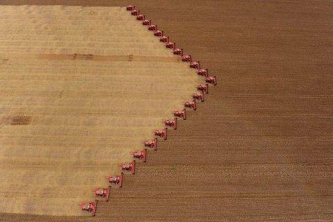Brasilianske traktorer høster inn soyabønner.