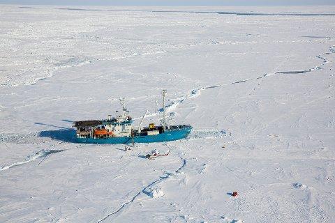 Polfarerne Bengt Rotmo og Aleksander Gamme er på vei mot kollegaene Børge Ousland og Mike Horn, som snart er uten forsyninger og sliter med ødelagt utstyr på sin vei over Polhavet fra Alaska til Svalbard. Her forskningsskipet Lance fotografert i 2015. Arkivfoto: Tore Meek / NTB scanpix