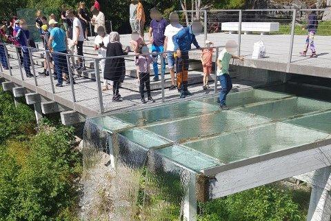 Den unge gutten ble løftet over rekkverket for å hente mynter som folk hadde kastet ut på glassdekket ved Ørnesvingen.