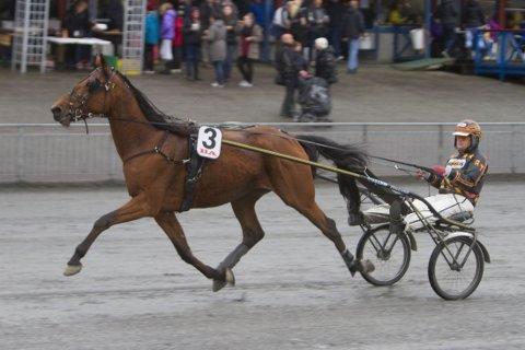 Rolf Tvedt er aktuell i Bergen onsdag. Foto: Anders Kongsrud/www.hesteguiden.com