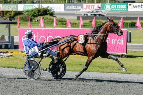 Ecurie D. kommer ut i storløpet Paralympiatravet på Åby lørdag. Foto: Lena Emmoth / Tr. Media / NTB scanpix