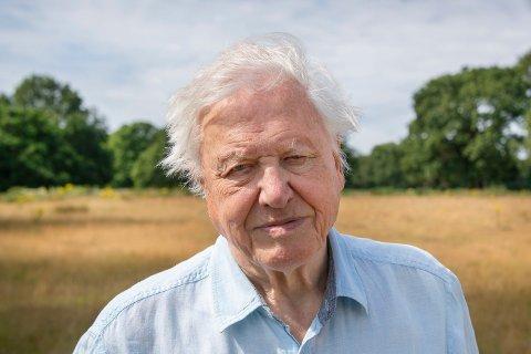 MILJØFORKJEMPER: David Attenborough er en miljøforkjemper som har bidratt til utallige dokumentarer opp gjennom årene.