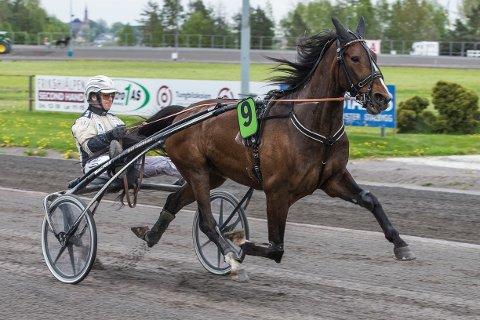 Magnus Jakobsson er aktuell i torsdagens V4-lunsj. FotoMorten Skifjeld/Hesteguiden.com