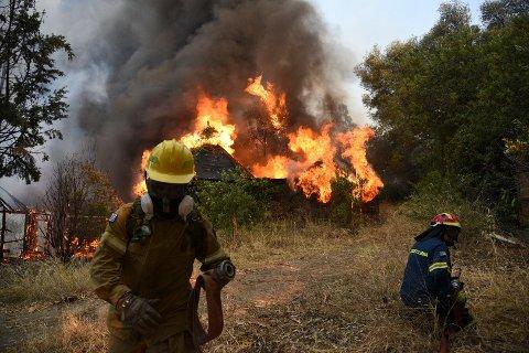 Brannmannskaper i innsats under en skogbrann i nærheten av Lampiri vest for Patras lørdag. Foto: Andreas Alexopoulos / AP / NTB