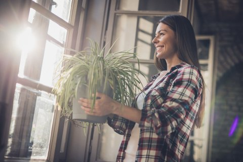 HØSTKLART HJEM: Det er høst, og vi gleder oss til å friske opp hjemme.