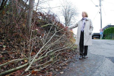 Tove Bøhn viser en del av trær og kvist som ble brukt til å sperre inngangsdøren. Trefjerningen i Ombergveien er ikke gjort på hennes tomt, så hun er uforskyldt blitt innblandet.