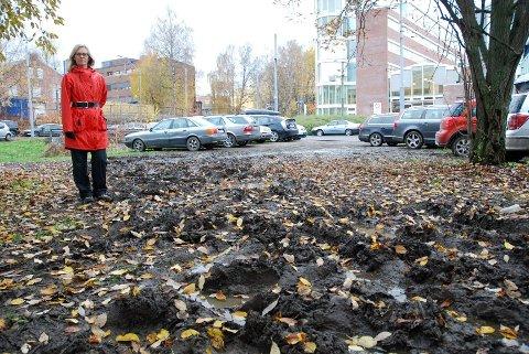 Julie M. Løddesøl i Hoffselvens venner tok i oktober opp ødeleggelsen av grøntområdet rundt trikkesløyfa. Foto: Vidar Bakken