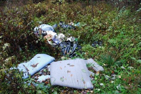 Allerede i september var store områder i Husebyskogen dynget ned av søppel.