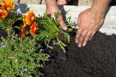 HAGEARBEID: Den første lørdagen i mai skal du visstnok helst gjøre hagearbeidet naken - om du kan og vil og tør.
