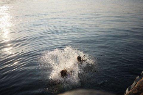 HOPPET I VANNET: Tenåringsjentene som hoppet i vannet på Verftet i Bergen torsdag meldte at vannet var kaldt, men syntes det var deilig da de kom seg på land igjen.