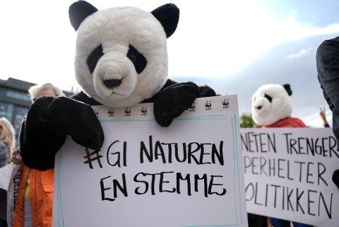 58 prosent av oss mener klimakrisen truer menneskeheten, ifølge en ny undersøkelse. Foto: Ali Zare / NTB