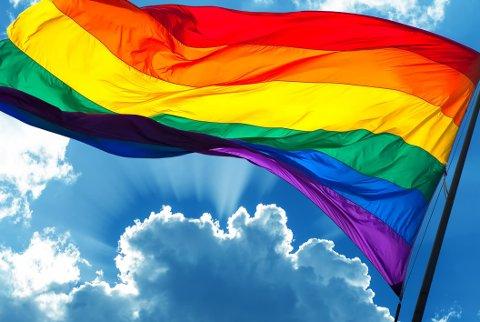 Det er fortsatt et stykke igjen før man kan snakke om en fullstendig samfunnsmessig aksept av befolkningens homofile gren.