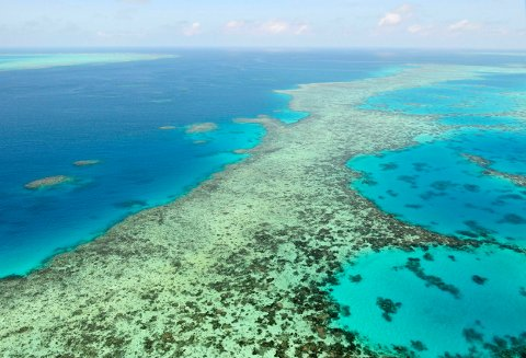 Et område på Great Barrier Reef i 2017. Foto: Kyodo / AP / NTB