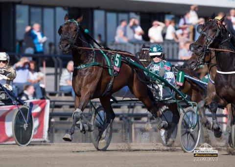 Tina Lagesen hadde en stor dag i Harstad sist løpsdag. I kveld er hun aktuell igjen. foto_Roger Svalsrød_hesteguiden.com