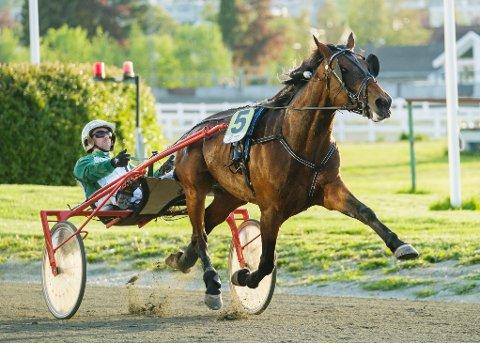 Inge Melby og The Last Ticket. I kveld kommer de ut på Leangen. foto_Ned Alley_Hesteguiden.com.