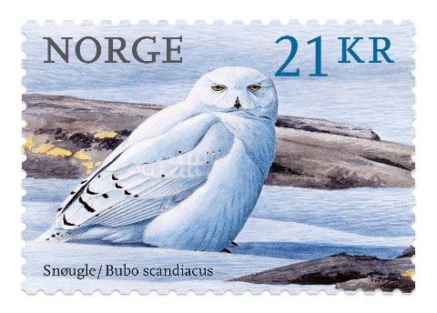 Snøugla malt av Viggo Ree er kåret til verdens vakreste frimerke utgitt i 2018. Foto: Illustrasjon / Posten / NTB scanpix