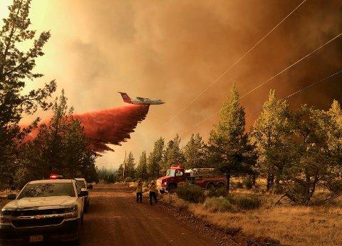 Et brannfly deltar i arbeidet med å slukke en skogbrann i Oregon i USA 11. juli. Noen uker tidligere ble Oregon, delstaten Washington og vestlige deler av Canada rammet av en hetebølge som ville vært omtrent utenkelig uten menneskeskapte klimaendringer, ifølge forskere. Foto: Myndighetene i Oregon / AP / NTB