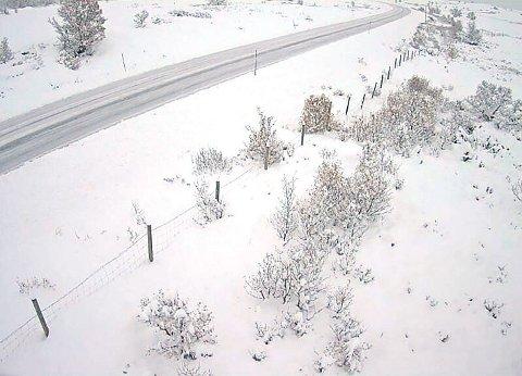 SNØDEKKE: Bilde fra fjellovergangen ved Hjerkinn på E6 over Dovrefjell. Statens Vegvesen melder om vekslende løs snø og snødekke og vanskelige kjøreforhold ved fjellovergangene i Sør-Norge.