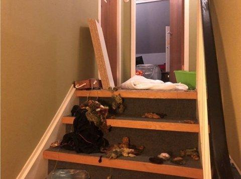 Bildene av den ramponerte boligen opprørte mange. Nå sier politiet at de ikke har greid å finne noen mistenkte.
