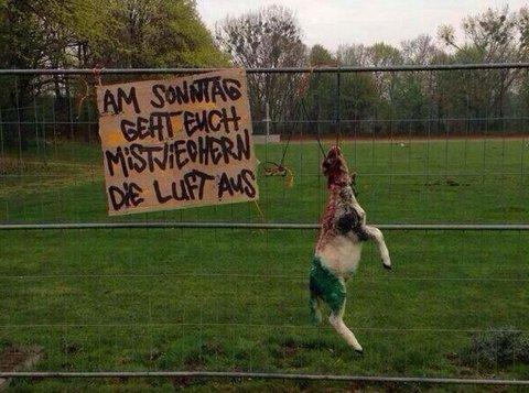 BESTIALSK: Mange vil mene at en gruppe Braunschweig-supportere har gått over streken med dette påfunnet.