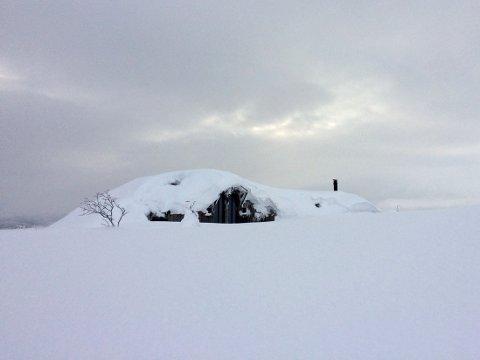 Vinterferien er igang, og i fjelltraktene er det mer enn nok snø, som her på Dalsethaugen på Veggli i Rollag. Her er det 2, 5 meter snø på flat mark.
