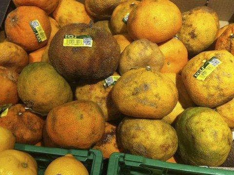 «UGLI»: Denne frukten heter ugli, og skal faktisk se sånn ut.
