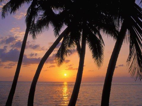 Nyt solnedgangen med fiffen i Belize.