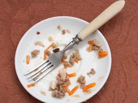 FORSKNING: Ifølge en ny, amerikansk studie så spiser vi opp den maten vi forsyner oss med, men forskerne håper nå at økt bevissthet om hvor mye mat vi legger på tallerkenen kan bidra til at man unngår overspising.