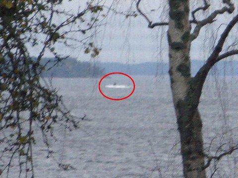 UBÅT: Det svenske forsvaret offentliggjorde i fjor høst et bilde som viste noe mørkt over havoverflaten. Bildet ble tatt av en privatperson ved den svenske østkysten.