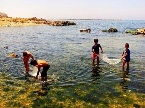 DREPT: De fire guttene lekte på stranden, da israelske soldater tok dem for å være våpnede palestinske menn. Her de fire fra en annen dag på stranden.