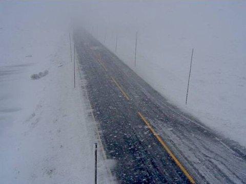 Slik så det ut på riksvei 7 over Skulevika fredag morgen.