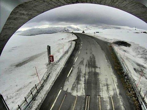Bildet er fra webkamera på fylkesvei 813 på Reinhornheia i Nordland.