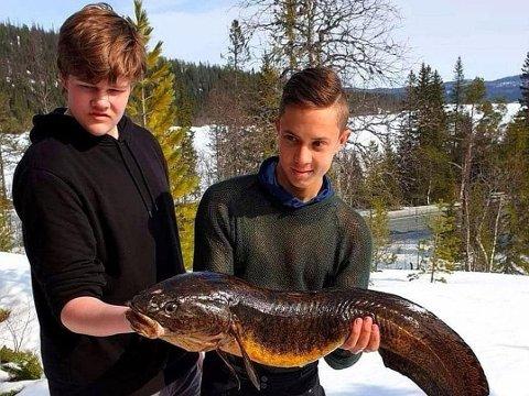 FIKK KJEMPELAKE: Gutta på 14 og 18 år holder stolt frem sin lake på 91 centimeter.