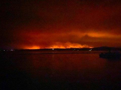 MÅTTE RØMME BYEN: Utsikt mot flammer og røyk fra skogbrannen i Mallacoota i delstaten Victoria nyttårsaften. I denne kystbyen måtte om lag 4000 mennesker søke tilflukt på stranda i byen da brannene og den intense varmen som følger med, kom stadig nærmere.