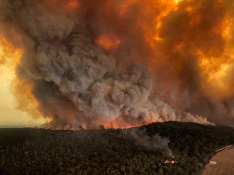 SKOGBRANN: Kraftig røyk fra en skogbrann i Bairnsdale i Australia 30. desember.