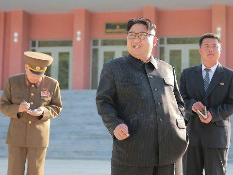 Ryktene vil ha det til at Nord-Koreas leder Kim Jong-un er alvorlig syk etter å ha gjennomgått en hjerteoperasjon. Nord-Korea har verken bekreftet eller avkreftet ryktene.