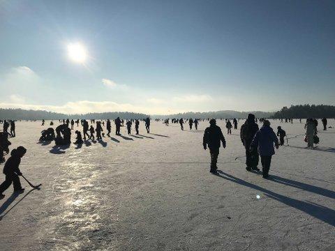 FOLKSOMT: Dette bildet er tatt på Høvik i Bærum kommune, rett nedenfor Henie Onstad-senteret, søndag.