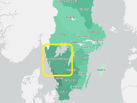 HØYT INNSLAG: Nye tall fra Sverige viser høyest innslag av engelsk virusvariant blant positive prøver i region Västra Götaland.