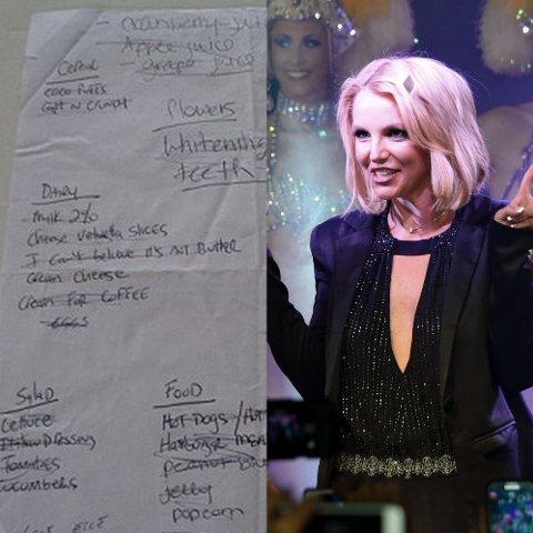 AVSLØRT?: Ebay-selgeren mener han sitter på de private handlelistene til Britney Spears. Er dette det hun egentlig putter i handlekurven? Foto: Ebay / Bulls